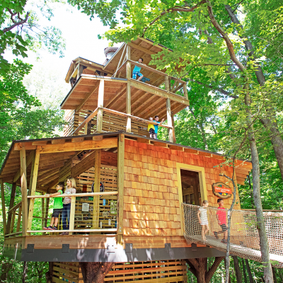 Architectural &#038; Engineering Firm<br/>Treetop Outpost